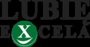 Szkolenia, kursy Excela - lubieExcela.pl